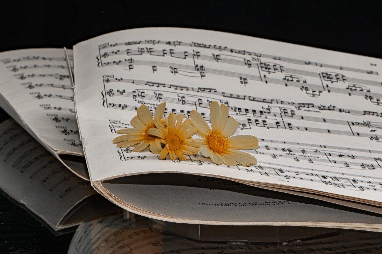 sheet music, 19th century, cello